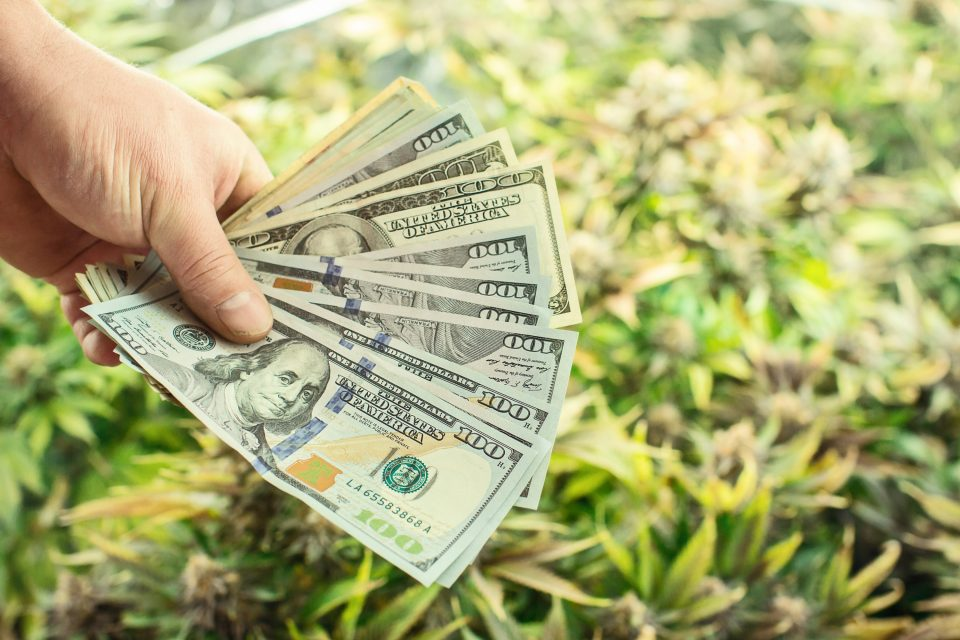 photo of Massachusetts Cannabis Commission Fines Tilt Holdings, Ayr Strategies image