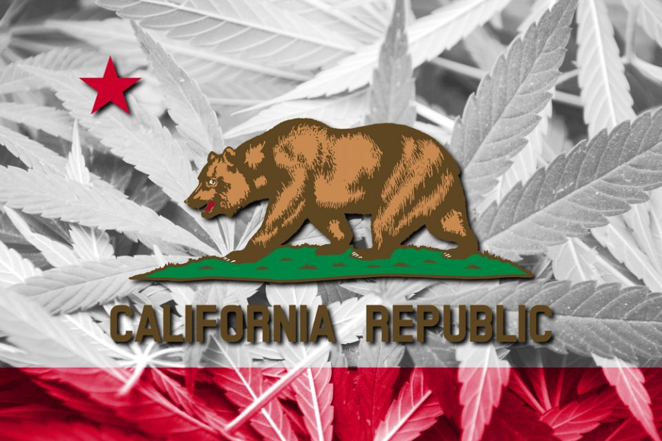 Here's The Cannabis California Consumers Really Buy