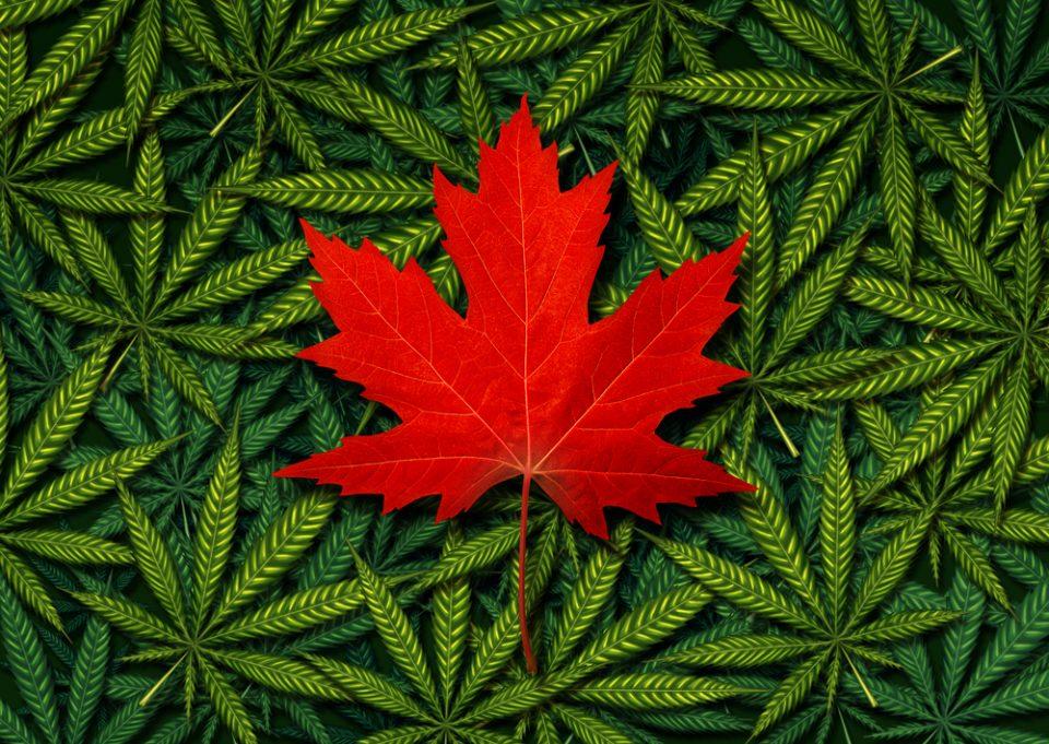 Canada3.jpg