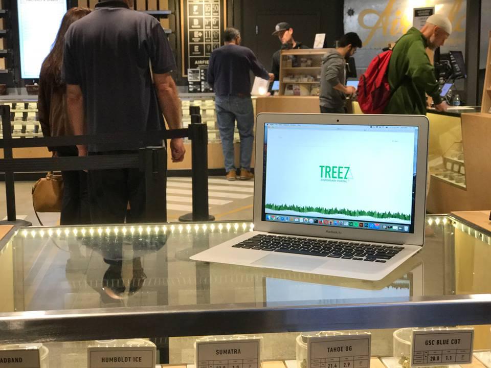 Treez.jpg