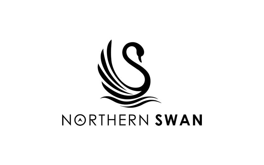 img_northernswan-2.jpg