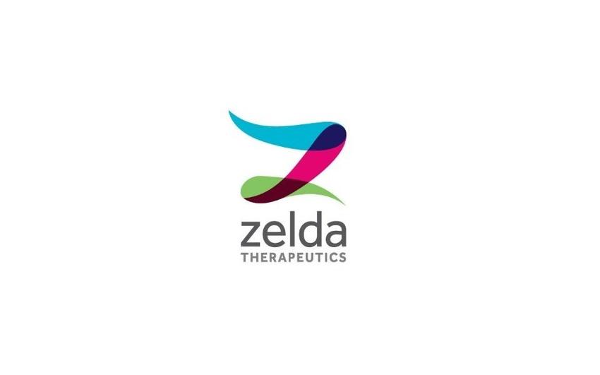 logo_zelda.jpg