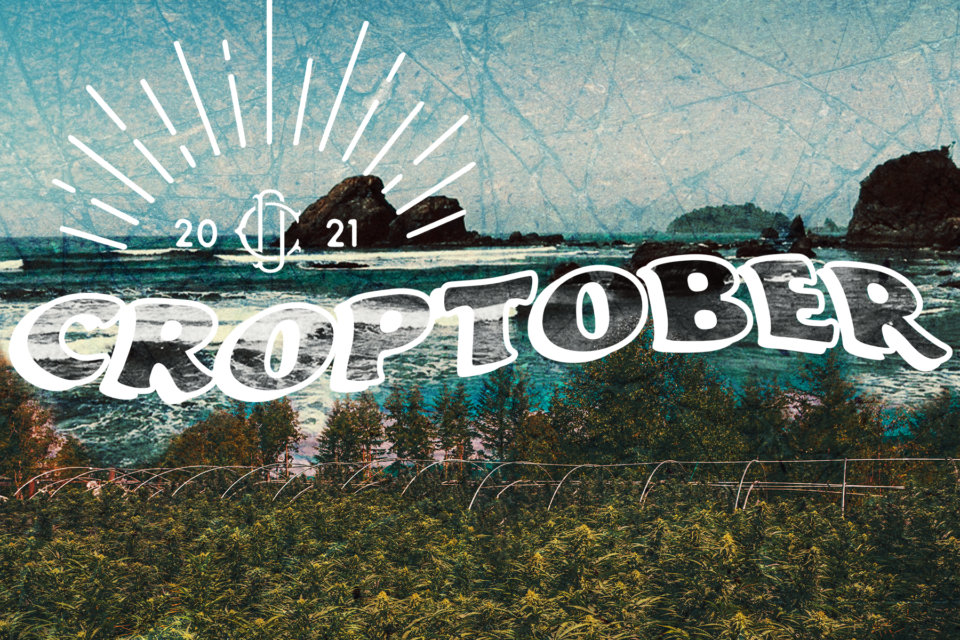 Cannadips Announces First Annual Croptober: A Humboldt Harvest Experience
